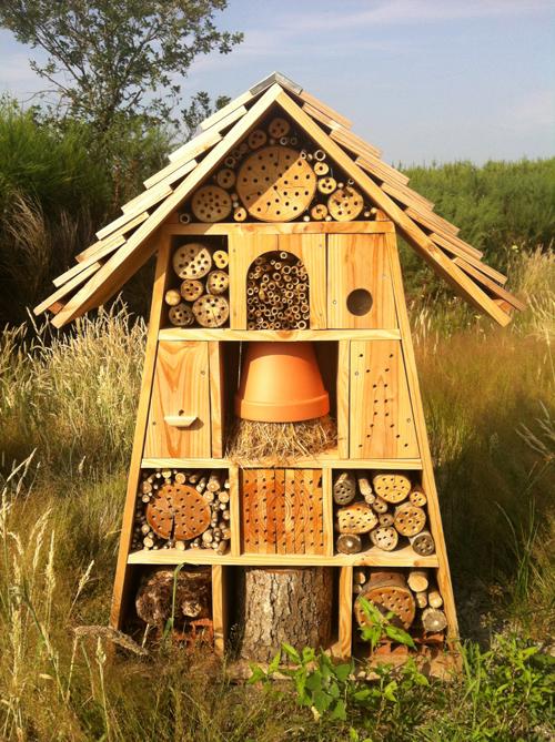 H tel insectes et parcours biodiversit biocenys for Hotel a insecte coccinelle