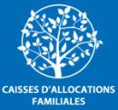 Caisse allocations familiales Toulouse, ruches, abeilles, miel, biodiversité
